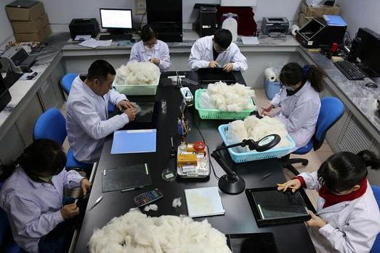 内蒙古推行毛绒产业标准化检验