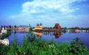 #发现青城#南湖湿地公园