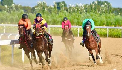 蒙古马常规赛打造新名片