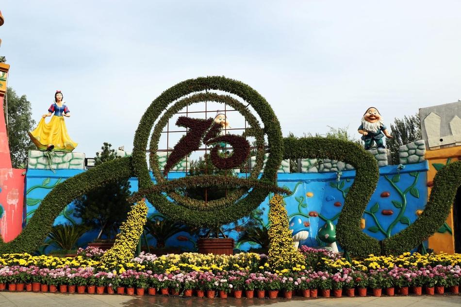 呼和浩特市第十一届菊花展在阿尔泰游乐园开展