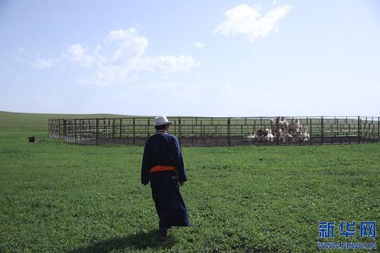 8月2日,其日麦拉图在自家草场查看骆驼的喂养情况。新华网记者 焦鹏摄