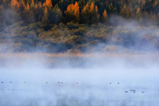 爱上内蒙古 丨 秋韵如画 细数多色美丽静湖
