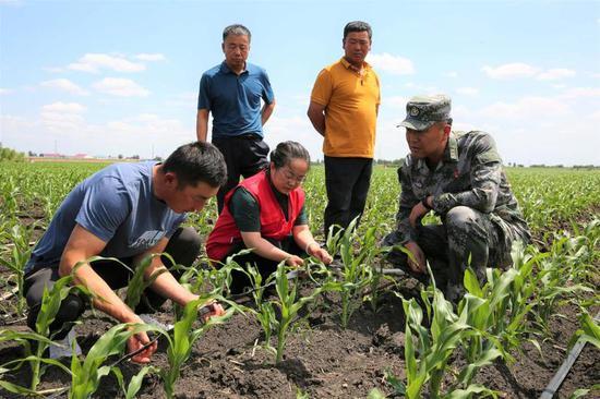 专家深入高力板镇新发嘎查为农牧民讲解科学种养殖知识。李娜 摄(资料照片)