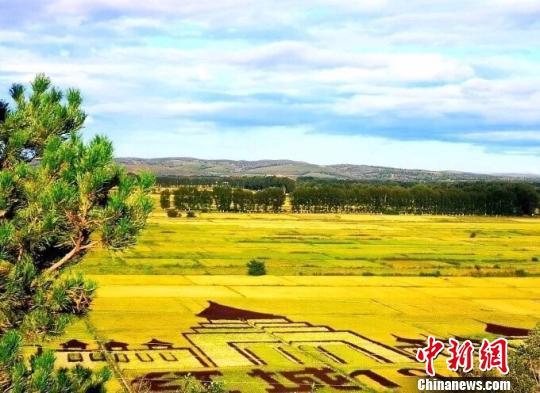 图为成熟后的稻田美景。兴安盟行政公署供图