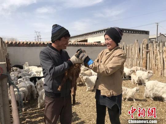 图为王喜和夫妇给羊羔喂奶。 王荣 摄