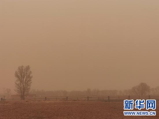 3月15日,呼和浩特市托克托县强沙尘暴天气最小能见度258米。 新华网发(李敏娟摄)