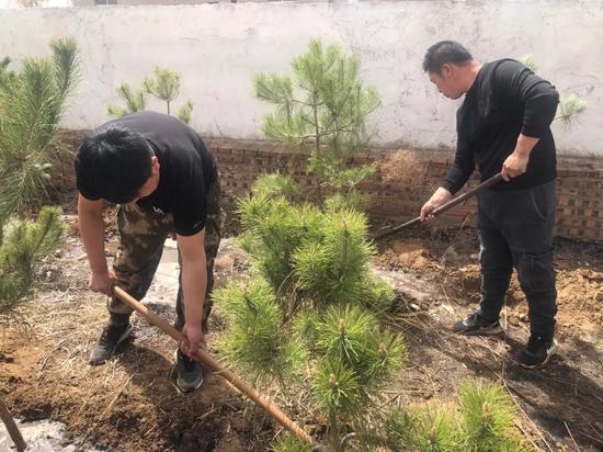 库伦旗:造林绿化为乡村振兴打亮生态文明底色