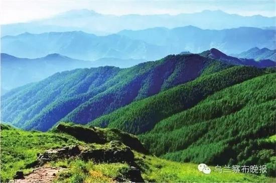 ●红山林场(丰镇) 摄影:张建新