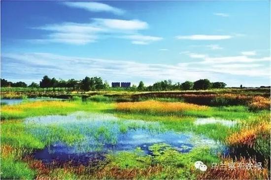 ●不冻河湿地(商都) 摄影:张建新