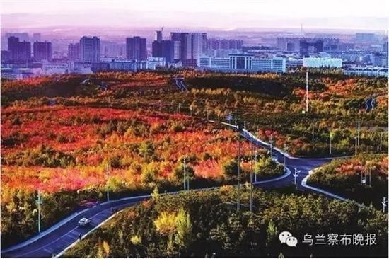 ●城在林中(集宁)摄影:武文