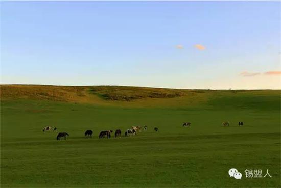 这里素来以拥有完整的草原类型而著称于世
