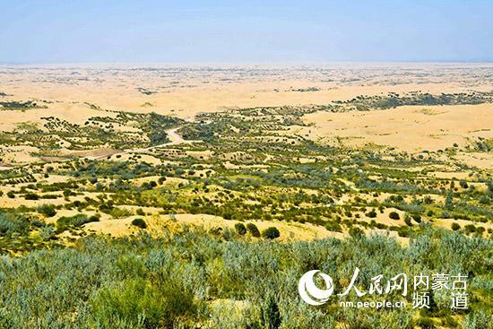 登高远眺,库布其沙漠腹地呈现星星点点的绿色