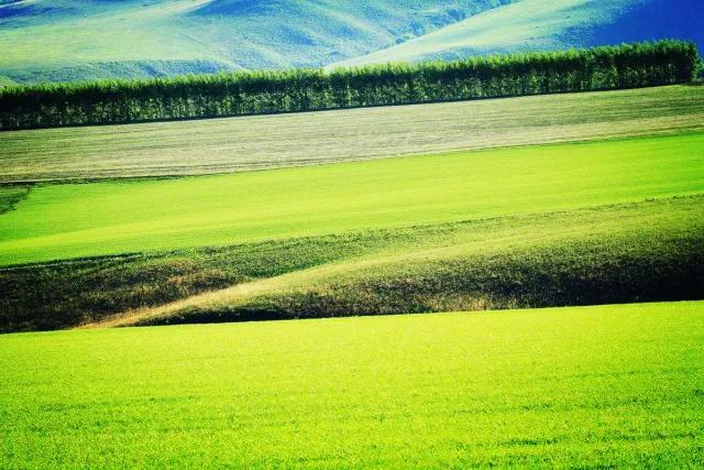 摄影/绿野狂风