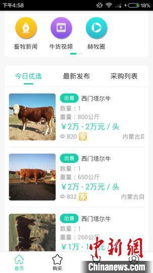 图为锡林郭勒阿巴嘎旗一企业开发的畜牧业信息平台。 奥蓝 摄