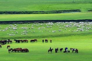内蒙古自治区推新举措助力文旅产业恢复发展