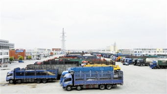 """通辽经济技术开发区商贸物流业提质增效""""加速跑"""""""