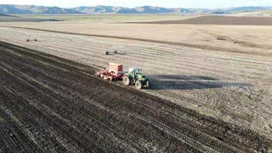 内蒙古呼伦贝尔:科技来提气 丰收增底气