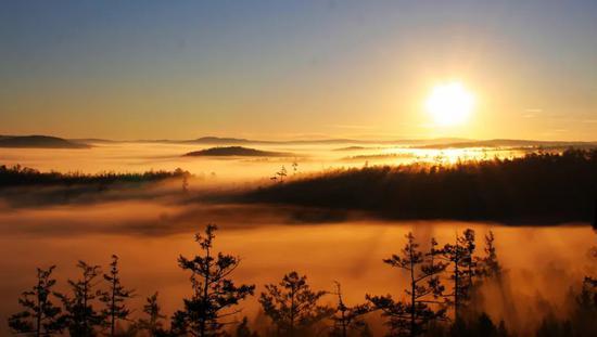 爱上内蒙古 丨 探寻莫尔道嘎森林秘境之旅