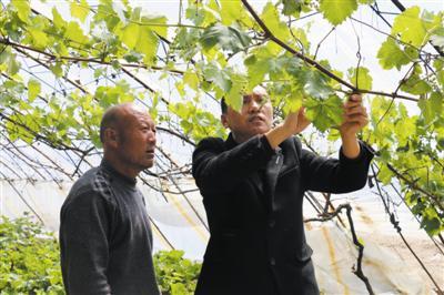 为全面提升贫困劳动力就业创业能力,霍林郭勒市按照...