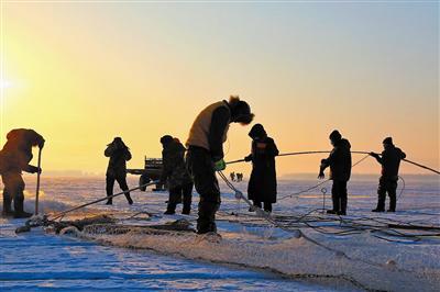 1月23日通辽市扎鲁特旗红旗渔场拉开了冬捕序幕