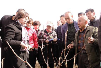 3月19日,内蒙古农业大学农学院教授李小燕(左一)指...