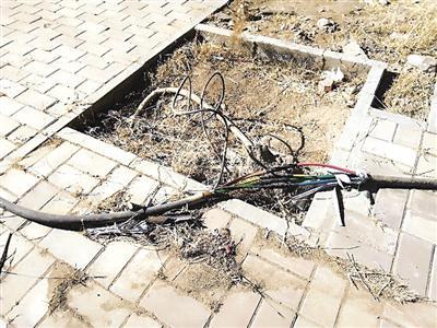 小区的临时电缆