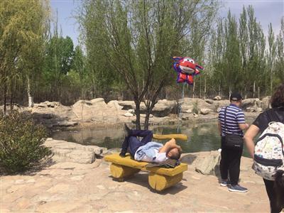 市民在野生动物园内的长椅上睡觉