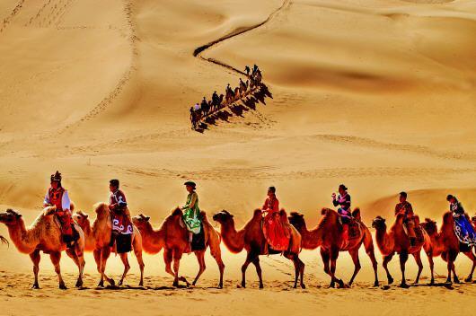 沙漠中的驼队。(资料图片)记者徐建摄