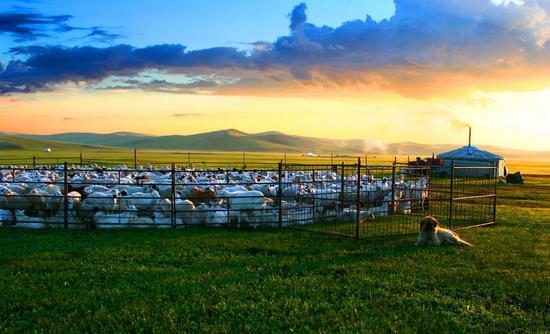 爱上内蒙古 丨 呼伦贝尔五条春夏旅游特色线路来袭