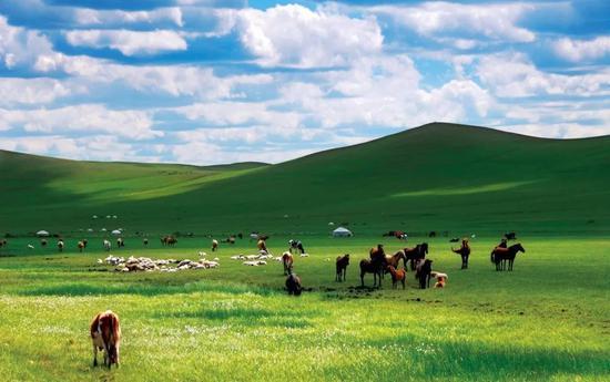 请苏州来畅游内蒙古