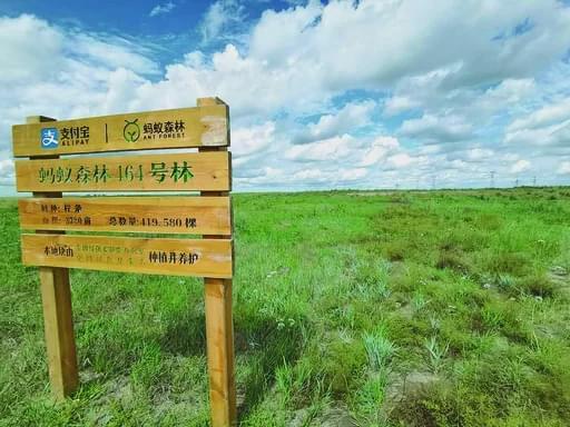 """""""绿下生金""""有门路 探索生态文明建设的中旗实践"""