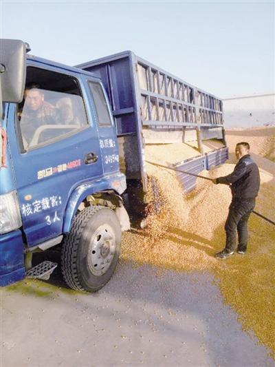 农民将粮食存到共享粮行 摄影/ 范亚康