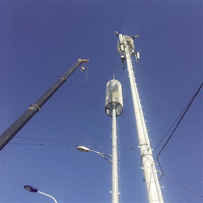 公共绿地内相距仅约5米的信号塔