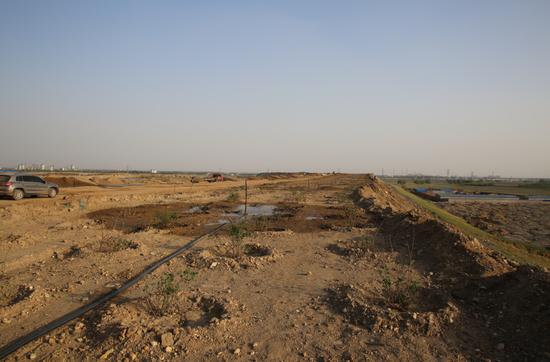 丰泰热电厂储灰场治理绿化工程