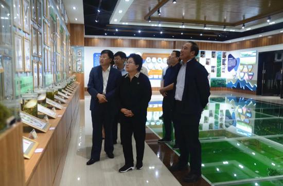 内蒙古自治区副主席艾丽华到森工集团 陈佰山陪同调研