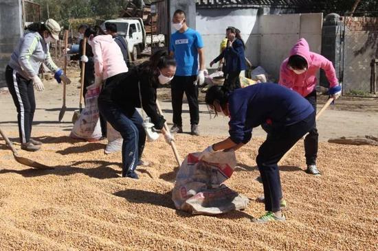 市直机关干部帮助受灾村民将晾晒的玉米装袋,减少损失。