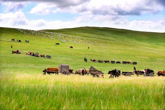爱上内蒙古 丨 高考结束快来开启纯美草原风情之旅