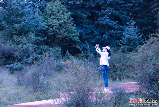 圖為游客在保護區內拍照留念。