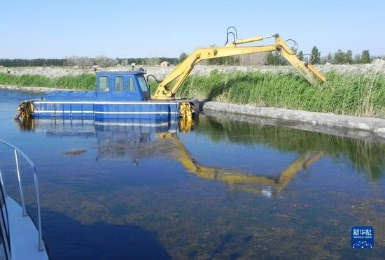 内蒙古乌梁素海正在实施网格水道工程。 新华社记者李云平 摄