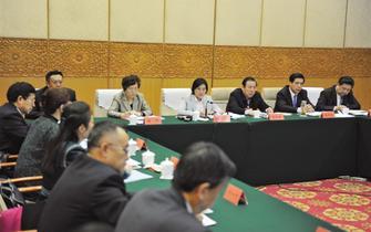 布小林参加政协委员联组讨论