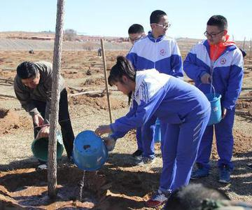 县四大班子领导参加义务植树活动