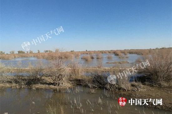 由于近期沙尘天气频繁,5月5日,阿拉善盟额济纳旗额很呼修日嘎查的草木还未返青。(郭敏 摄)