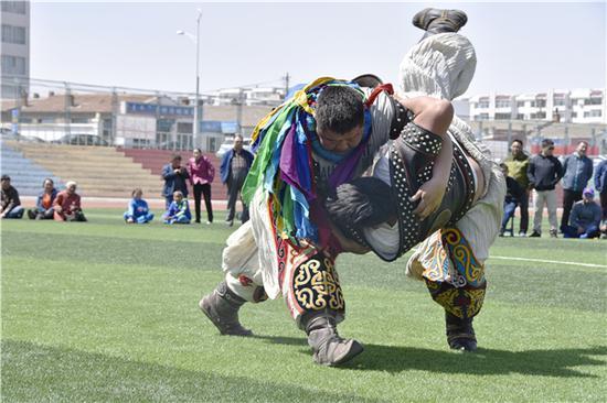 达茂旗搏克手都日斯哈拉图在赛场摔跤