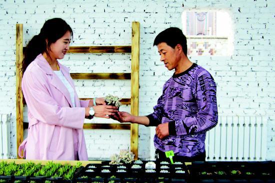 王凯(左)向游客介绍多肉植物的习性