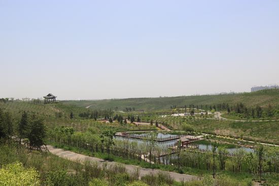 沙坑公园景观