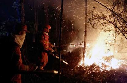 内蒙古大兴安岭高地林场火灾已投入4000人扑救
