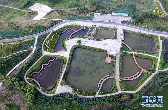 2016年,霸王河公园被国家林业局批准为国家级湿地试点公园。(戴浩浩摄)