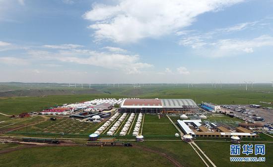 盛夏时节,内蒙古辉腾锡勒草原处处皆美景。(戴浩浩摄)