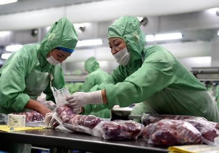 苏尼特右旗朱日和镇乌兰哈达嘎查的乌仁高娃在内蒙古牧都羊绒制品有限公司的纺线车间工作。记者 任军川/摄