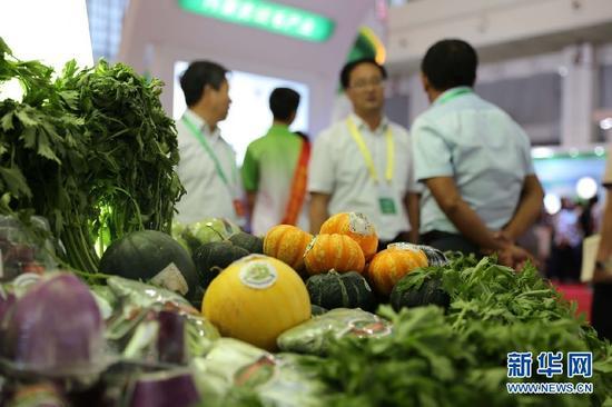 内蒙古绿色农畜产品精品展区展出的绿色有机蔬菜。